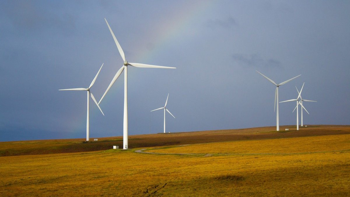 Ethical finance poised to unleash the green recovery